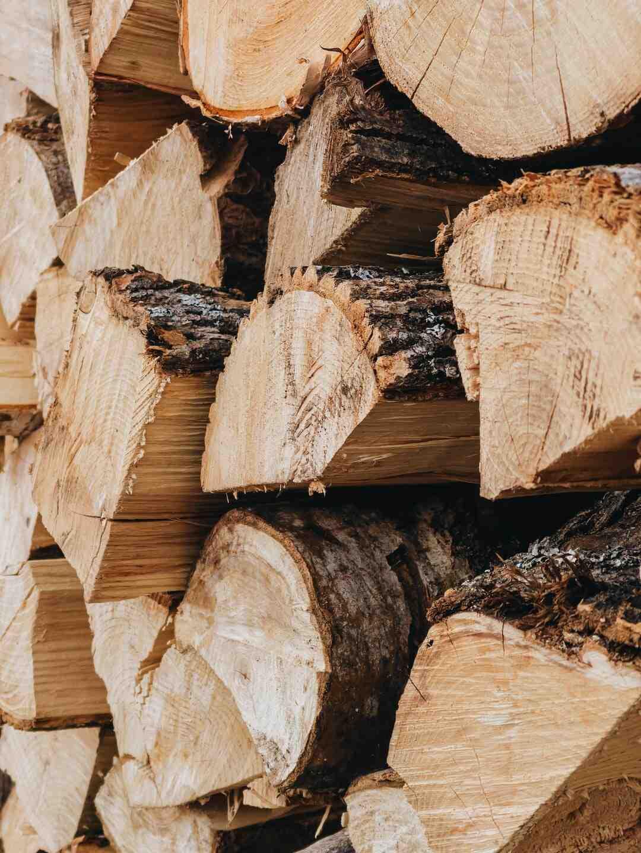 Poele a bois ou granulé